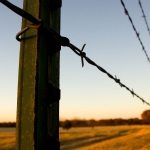 barb-wire-fences-college-station